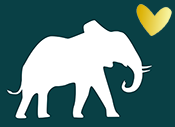 Baby Lintvelt Logo